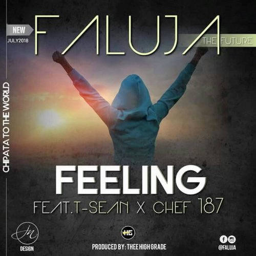 Feeling (Ft Chef 187, T Sean)