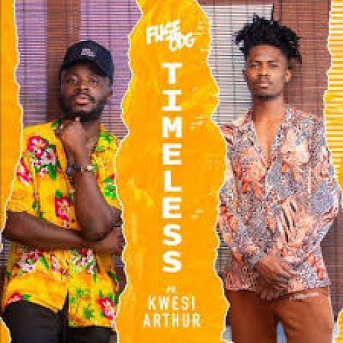 Timeless (Ft Kwesi Arthur)