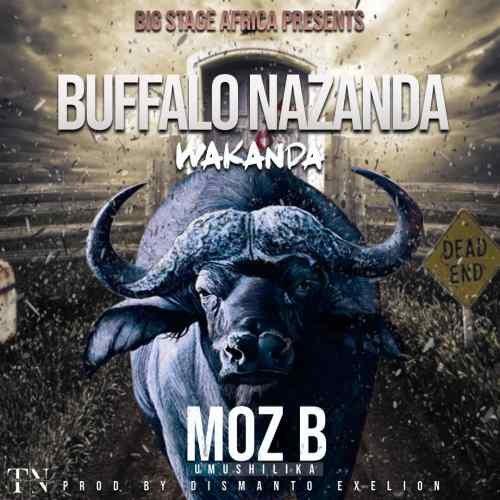 Buffalo Nazanda