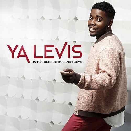 Ya Levis