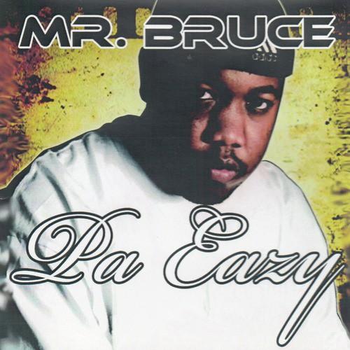 Mr Bruce