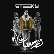 Steeky