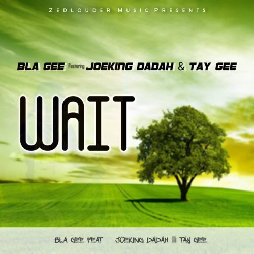 BLA GEE Ft JOEKING DADAH AND TAY GEE WAIT PROD BY KAY BEST