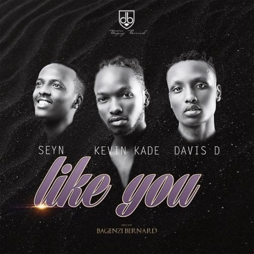 Like You  By (Ft Seyn, Davis D)