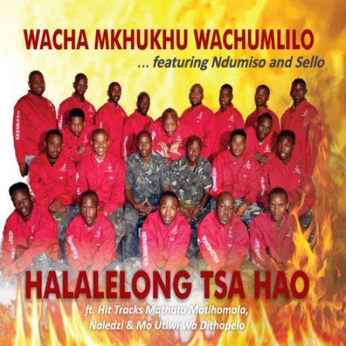 Wacha Mkhukhu Wachumlilo