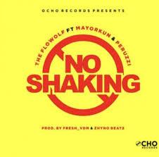 No Shaking (Ft Mayorkun, Peruzzi